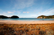 matapouri bay, northland, new zealand, an iconic new zealand beach with its calm water and golden sand, is framed on either side by the natural beauty of the nz coast