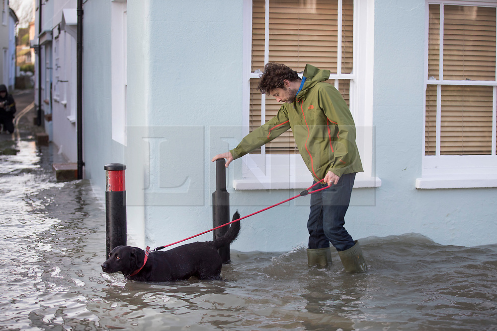 © Licensed to London News Pictures. 03/01/2018. Bosham, UK. A man walks through tidal flood water with his dog at Bosham as storm Eleanor hits the south. Winds of up to 80 mph are being forecast today in parts of the UK. Photo credit: Peter Macdiarmid/LNP
