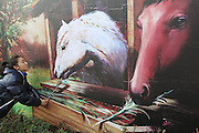 China Out - Finland Out<br /> NANTONG, CHINA - <br /> <br /> 3D Horse Painting<br /> <br /> People pose with a 3D horse painting at 1985 cultural industry park on January 28, 2014 in Nantong, Jiangsu Province of China. Chinese people are preparing for the Spring Festival, the year of horse, which will fall on January 31 according to Chinese calendar. <br /> ©Exclusivepix