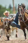 Steer Wrestler Shawn Downing of Silver Star, Montona of grabs the horns of a steer at the Cheyenne Frontier Days rodeo at Frontier Park Arena July 24, 2015 in Cheyenne, Wyoming. Frontier Days celebrates the cowboy traditions of the west with a rodeo, parade and fair.