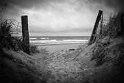 Peaceful Pacific Ocean.  Cape Lookout State Park, Tillamook, Oregon.  Nikkor 50mm f/1.8 AIS.