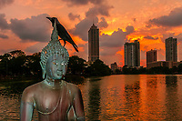 A crow sits atop a Buddha statue, Seema Malaka Temple, Beira Lake, Colombo, Sri Lanka.
