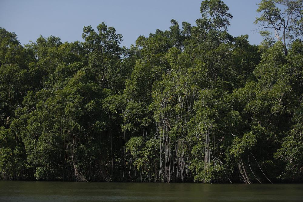 Barreirinhas_MA, Brasil.<br /> <br /> Parque Nacional dos Lencois Maranhenses em Barreirinhas, Maranhao. Na foto, Rio Preguicas.<br /> <br /> Lencois Maranhenses National Park in Barreirinhas, Maranhao. In this  Preguicas river.<br /> <br /> Foto: LEO DRUMOND / NITRO