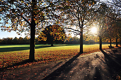 © Licensed to London News Pictures.05/11/2017.<br /> GREENWICH, UK.<br /> Early morning sunny weather at Greenwich Park,Greenwich.<br /> Photo credit: Grant Falvey/LNP