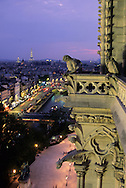 France. Paris elevated view from Notre dame cathedral. gargoyls overlooking paris at night, Chimera gallery of Notre dame cathedral and the Seine river.