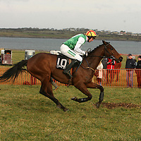 Derek O' Connor on The Taxi Driver going on to win the 2nd at the Clare Hunt point to point in Bellharbour on Sunday.<br /> Photograph by Yvonne Vaughan
