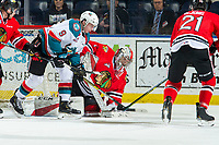 KELOWNA, CANADA - MARCH 3:  Shane Farkas #1 of the Portland Winterhawks covers the puck after Mark Liwiski #9 of the Kelowna Rockets tried to put the puck in the net on March 3, 2019 at Prospera Place in Kelowna, British Columbia, Canada.  (Photo by Marissa Baecker/Shoot the Breeze)
