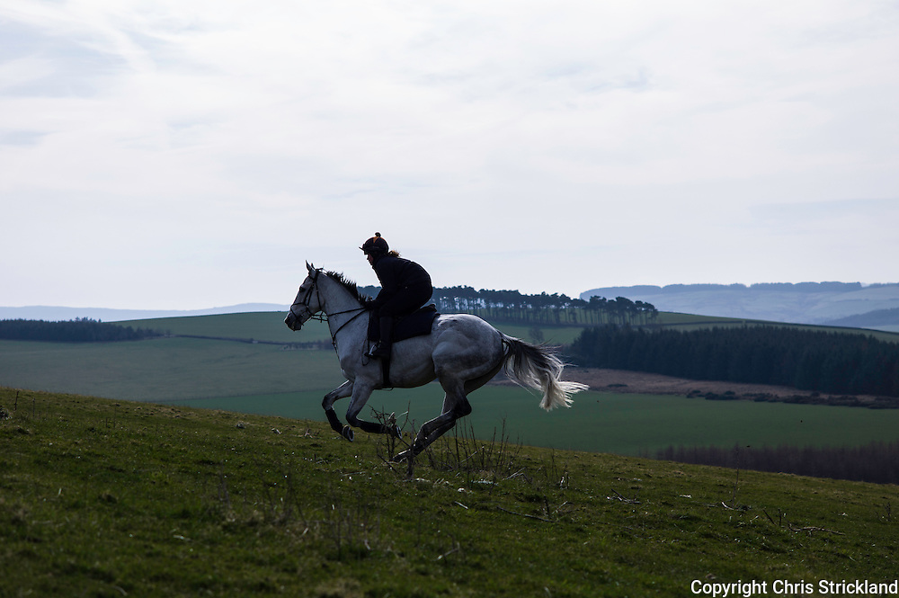 Bonchester Bridge, Hawick, Scotland, UK, 22nd March 2014 - Jockey Joanna Walton gallops racehorse Carters Rest up a grass hill on a bright day in the Scottish Borders.