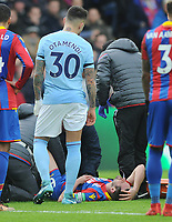 Football - 2017 / 2018 Premier League - Crystal Palace vs. Manchester City<br /> <br /> Scott Dann of palace in taken off injured, at Selhurst Park.<br /> <br /> COLORSPORT/ANDREW COWIE