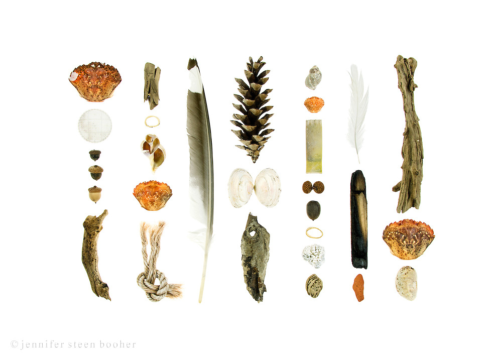 Green Crabs (Carcinus maenas), plastic sewage treatment disk, acorns (Quercus sp.), driftwood, lobster-claw bands, Waved Whelk (Buccinum undatum), fishing rope, feathers, White Pine cone (Pinus strobus), Soft-shell Clam (Mya arenaria), Dog Whelk (Nucella lapillus), plastic shotgun shell, Coralline (not sure of species), peach pit (Prunus persica), sea brick, Common Slipper Shell (Crepidula fornicata).