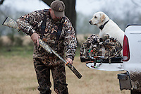 DUCK HUNTER WITH A YELLOW LABRADOR RETRIEVER IN THE BACK OF A TRUCK