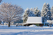 Idaho, Dalton Gardens, Coeur d' Alene. Horses stand by a stable in a snowy landscape on a small farm. . PLEASE CONTACT US FOR DIGITAL DOWNLOAD AND PRICING.