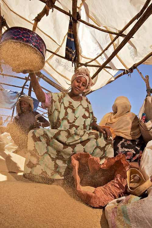 The market in Bati is incredibly large, diverse and crowded, being the place where people from the lowlands and highlands of northern Ethiopia meet to exchange their crops, livestock and wares. Something like 20,000 people show up at the Monday market every week. <br /> <br /> Grain is an extremely important commodity, including the all important teff for making injera. Farmers and sellers lay their grain out in bags and piles on plastic sheeting on the ground, and measure it out with tin cans. <br /> <br /> The cattle and camel market is equally large, with pastoral herders from the lowlands, many of them Afar people, coming to sell their livestock to the highland people. The market takes place in one big corral, with buyers and sellers squeezed in amongst the animals. <br /> <br /> Contact: Genene Gezu<br /> Program Coordinator<br /> Ethio-Organic Seed Action (EOSA)<br /> Tel: +251 11 550 22 88<br /> Mobile: +251 91 1 79 56 22<br /> genenegezu@yahoo.com<br /> shigenene@gmail.com<br /> PO Box 5512<br /> Addis Aababa, Ethiopia
