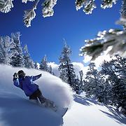 Mikey Wier - Lake Tahoe, CA