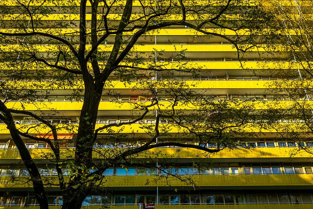 Nederland, Zeist, 26 okt 2016<br /> Woongoed woningbouwcorporatie. <br /> Geroflat<br /> <br /> Foto: (c) Michiel Wijnbergh