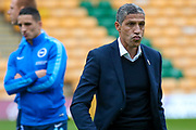 Brighton & Hove Albion manager Chris Hughton during the EFL Sky Bet Championship match between Norwich City and Brighton and Hove Albion at Carrow Road, Norwich, England on 21 April 2017. Photo by Simon Davies.
