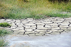 Marlborough-Hot temperatures bring drought conditions to  South Island