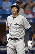 New York Yankees' Alex Rodriguez reacts to a strike call while batting during the seventh inning of a baseball game against the Tampa Bay Rays in St. Petersburg, Fla., Saturday, April 18, 2015.(AP Photo/Phelan M. Ebenhack)