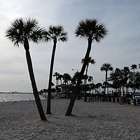 General view of the beach along the Courtney Campbell Causeway in Tampa, Florida. (AP Photo/Alex Menendez) Florida scenic highway photos from the State of Florida. Florida scenic images of the Sunshine State.
