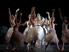 OCT 5 2012 Swan Lake Rehearsals
