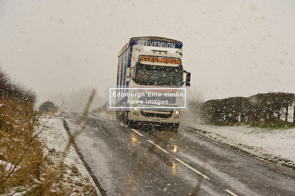 Pictured: No matter the weather deliveries still need to get through<br /> <br /> Poor weather conditions are taken in their stride by animals and workers on the A701 between Broughton and Moffat. <br /> <br /> Ger Harley | EEm 23 February 2017