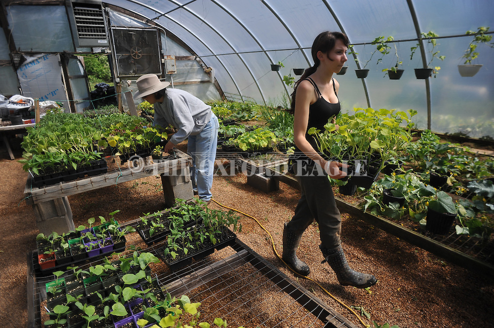 Workers at Old Thyme Farms near Oxford, Miss. on Wednesday, April 18, 2012.