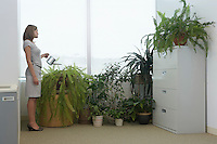 Office worker watering potted plants by office window side view