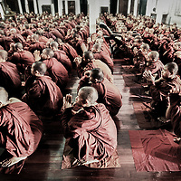 Bago (Pago), Myanmar (Burma) May 2006<br /> Buddhist monks read in a monastery of Bago.<br /> Photo: Ezequiel Scagnetti
