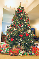 Large Christmas tree with presents around base .