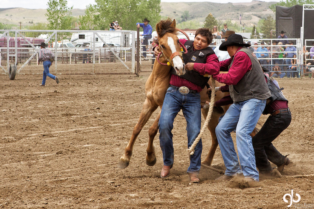 Images captured in Miles City at the world famous Bucking Horse Sale