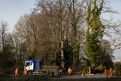 Denham, UK. 5 February, 2020. Engineers lay a temporary roadway across land cleared at Buckinghamshire Golf Club in the Colne Valley for works planned in conjunction with the HS2 high-speed rail link including the felling of mature trees and the construction of a Bailey bridge across the river Colne and a compound in Denham Country Park. Environmental activists are occupying trees in an attempt to prevent or hinder the work.