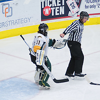 2nd year goalie Jane Kish (31) of the Regina Cougars in action during the Women's Hockey home game on October 8 at Co-operators arena. Credit: Arthur Ward/Arthur Images