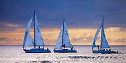 Sailboats head out to sea in Waikiki, Honolulu, Hawaii