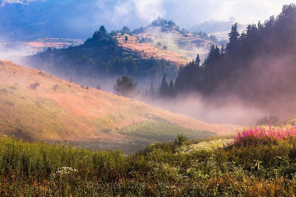 Misty mountain in a summer morning