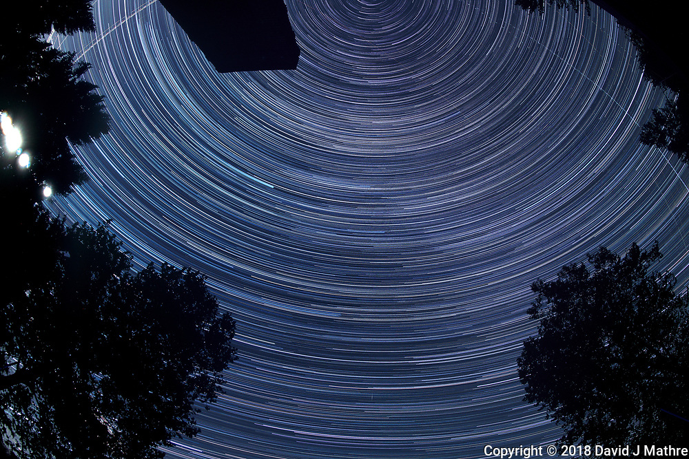 Star Trails 19:56-01:59. Composite of images taken with a Nikon D850 camera and 8-15 mm fisheye   (ISO 100, 15 mm, f/5.6, 30 sec)