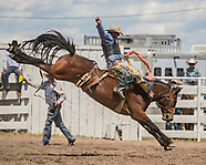 2017 Grover Rodeo