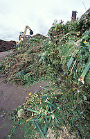 green waste piled in a landfill site ready for composting