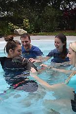 1-15-17 1:00 Otter Swim