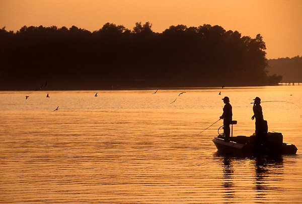 Stock photo of two men fishing off a boat on Toledo Bend lake at sunset with feeding birds
