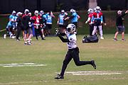 Carolina Panthers XXX during minicamp at Bank of America Stadium, Thursday, June 13, 2019, in Charlotte, NC. (Brian Villanueva/Image of Sport)