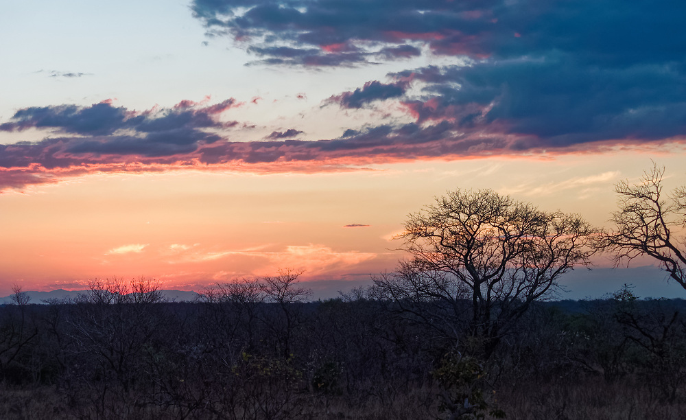 Suset on the Moditlo game reserve.