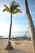 A hammock hangs from coconut palms along the beach in Key West, Florida