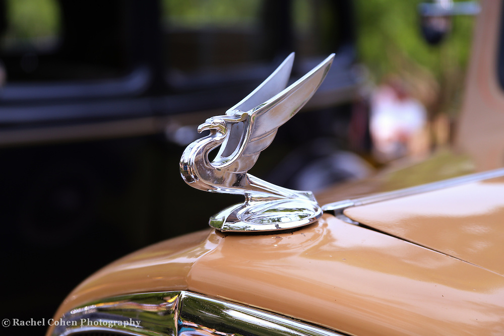 &quot;1934 Flying Eagle&quot;<br />