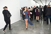 HARRIET CLAPHAM; Opening of new White Cube Gallery in Bermondsey. London. 11 October 2011. <br /> <br />  , -DO NOT ARCHIVE-© Copyright Photograph by Dafydd Jones. 248 Clapham Rd. London SW9 0PZ. Tel 0207 820 0771. www.dafjones.com.
