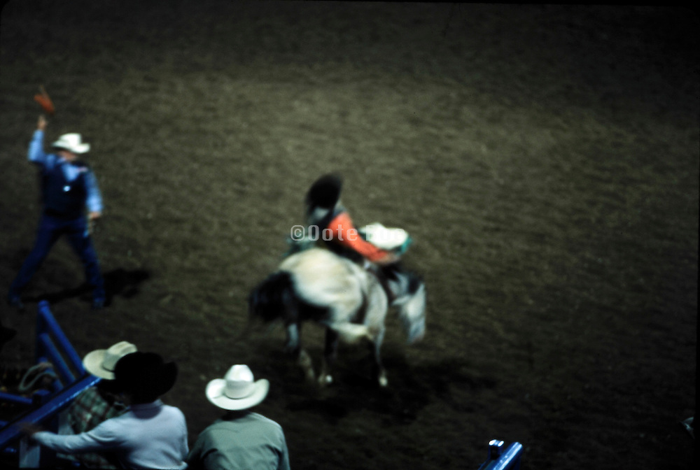 Mid Western rodeo with a cowboy on a bucking horse