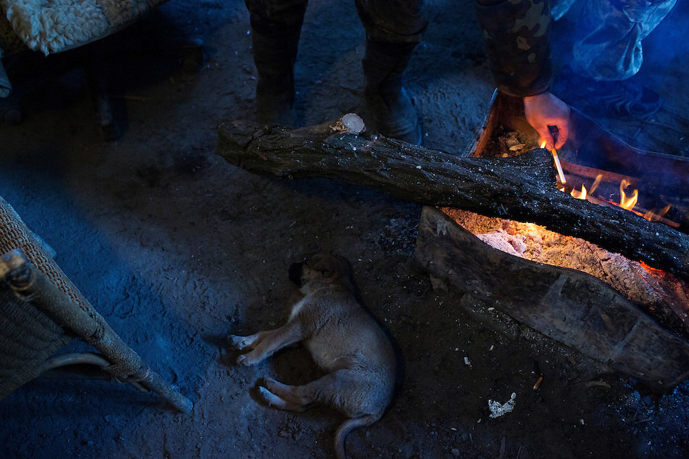 A puppy sleeps while a volunteer fighter lights a cigarette from a  fire at a bridge about two kilometers from the front on March 9, 2015 near Pisky, Ukraine.