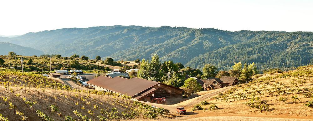 Ridge Vineyards, Santa Cruz Mountains, Cupertino, California