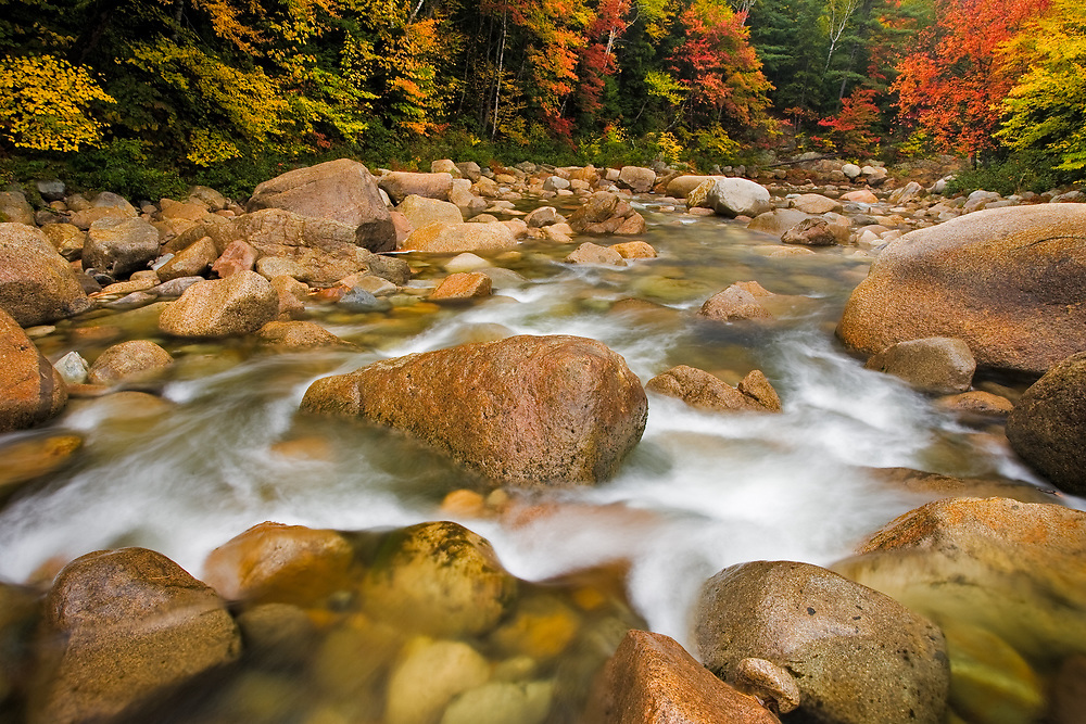 Autumn color along the Swift River in the White Mtns., New Hamphire