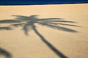 Shadow of palm tree traced on sandy beach Nilavelli, near Trincomalee, Eastern province, Sri Lanka, Asia