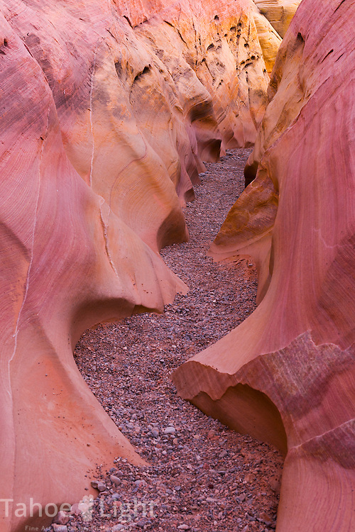 Small colorful slot canyon on the way to the Fire Wave, one of many features created by petrified sand dunes create the unique landscape of Valley of Fire state park in Southern Nevada about 2 hours outside of Las Vegas.